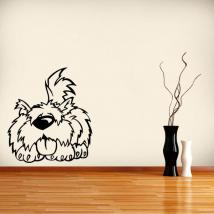 Carino pet vinile decorativo