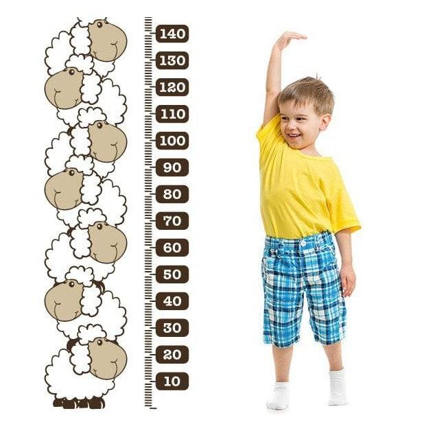 Pecore di vinile decorativo metro statura bambini