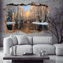 Vinile 3D lago in inverno