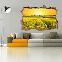 Vinile 3D Fiori Prato Natura