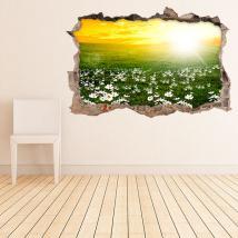 Vinile parete 3D fiori margherite bianche