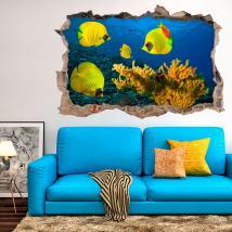 Vinile 3D coralli e pesci di mare