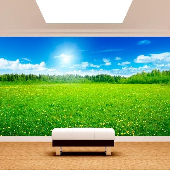 Fiori foto parete murales gialli nel campo