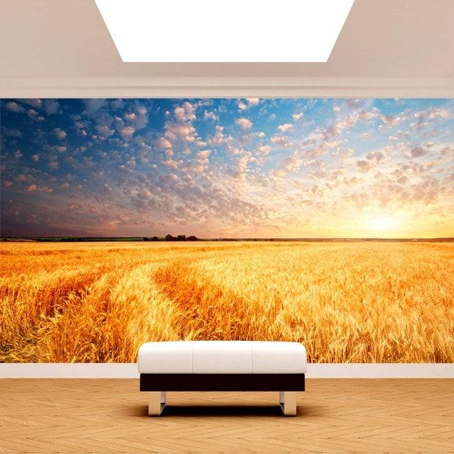 Foto tramonti di murales muro nel campo