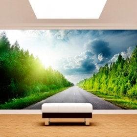 Foto muro murales road e strade