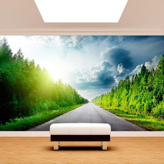 Pino e foto parete murales road