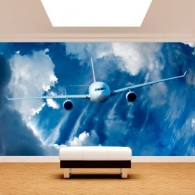 Velivoli di murales muro foto nel cielo