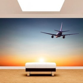 Aeroplano foto parete murales sunset