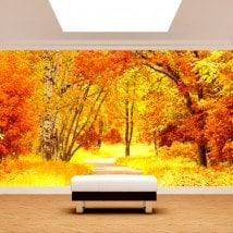 Fotomural strada ed alberi di autunno