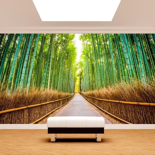 Bambù e foto parete murales road