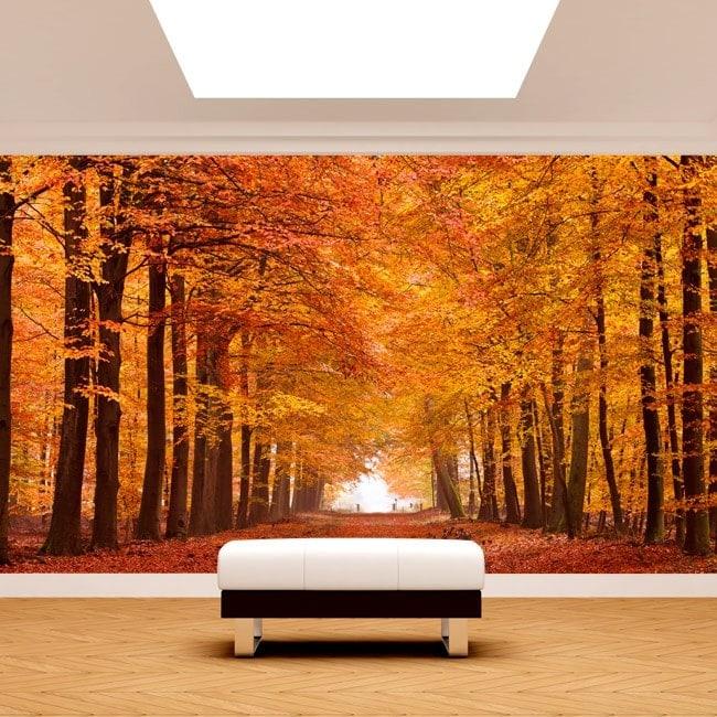Foto muro murales strada ed alberi autumn
