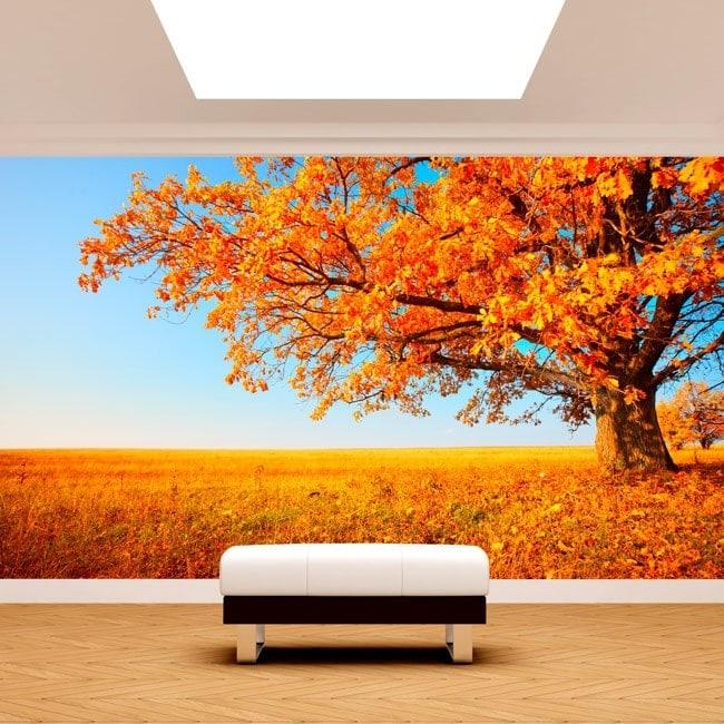 Foto muro murales albero caduta