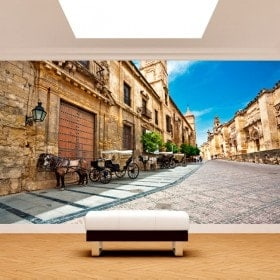 Città di Cordoba murales muro foto