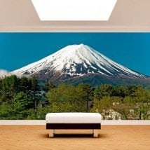 Fotomurali Monte Fuji