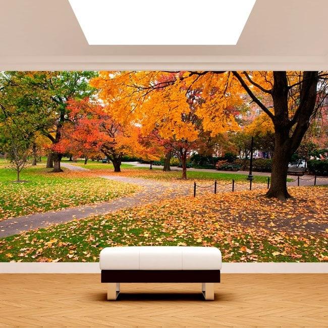 Fotomurali Park di Boston