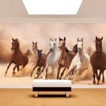 Fotomurali fuga precipitosa dei cavalli