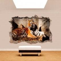 Parete in vinile rotto 3D Tiger