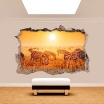 Parete in vinile rotto 3D zebre Africa