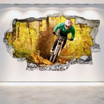 Vinile di parete-rotta di Mountain Bike 3D