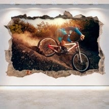 Vinile di Mountain Bike 3D