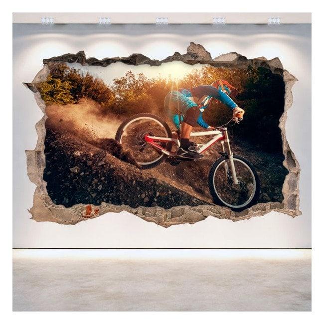 Vinile di Mountain Bike 3D
