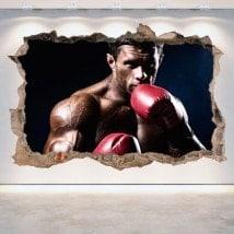 Boxing 3D vinile