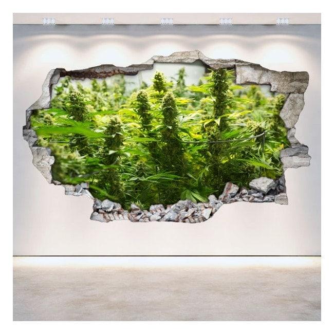 Cannabis di vinile 3D muro rotto