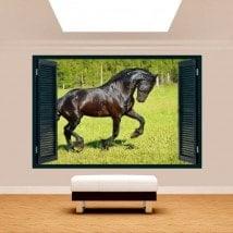 Cavallo di parete 3D di Windows nel campo