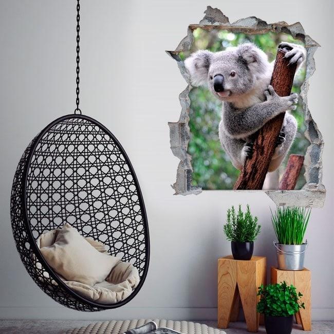 Vinile 3D Koala