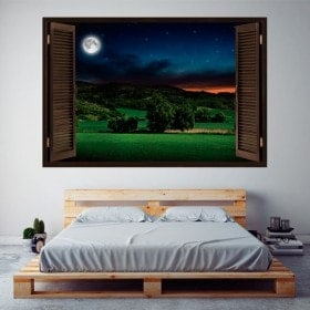 Windows vinile 3D full moon nel campo