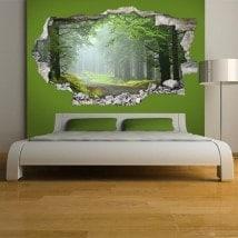 Natura e vinile pareti 3D road
