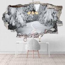 Vinile 3D Nevada montagne carpatiche