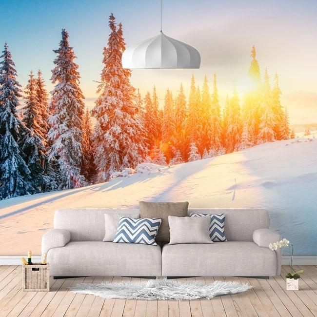 Murales fotografici di montagna dello Snowy