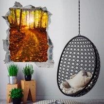 Vinile 3D raggi del sole nella foresta