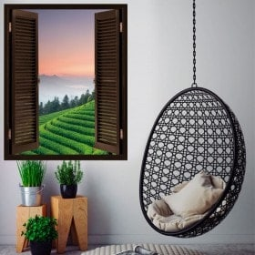 Finestre in vinile 3D piantagioni di tè