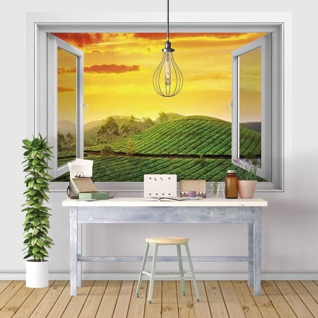 Windows in vinyl tramonto India 3D nel campo