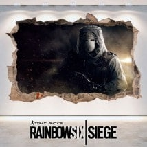 Assedio di vinile 3D Tom Clancy Rainbow Six