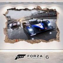 Vinile 3D Forza Motorsport 6