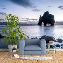 Fotomurali Dinosauro Islanda della roccia