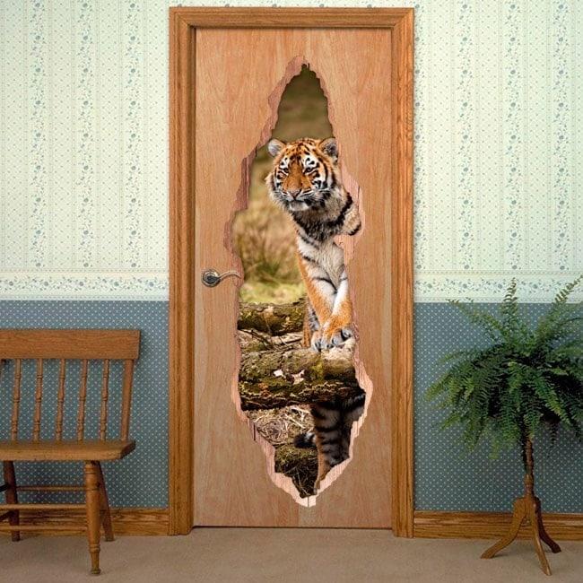 Tigre siberiana porte per vinili