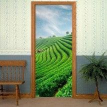 Adesivi per la piantagione di tè di porte