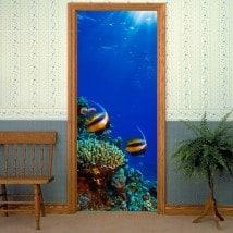 Vinili per pesci porte nel mare