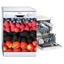 Vinile di lavastoviglie collage di frutta