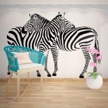 Vinile decorativo muri zebre