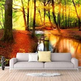 Adesivi da parati tramonto nella foresta in autunno