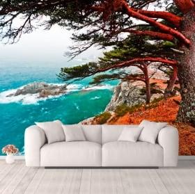 Murales albero di cedro Rocky Island