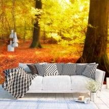 Fotomurali alberi nella foresta d'autunno