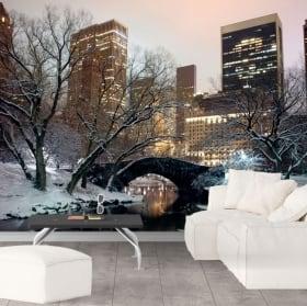 Murales Central Park di New York