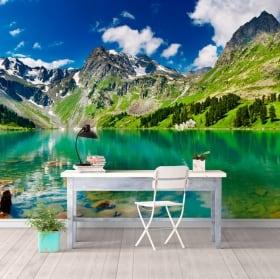 Murales lago e montagne