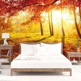 Murales tramonto alberi in autunno